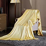 Pure silk quilt cover single piece Thickened double-sided pure silk quilt-A 220x240cm(87x94inch)