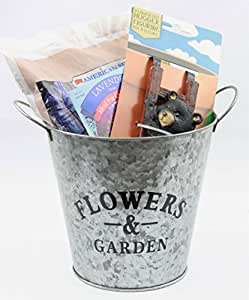 Maceta de flores con maceta para colgar decoración, suelo de maceta, semillas de flores de lavanda