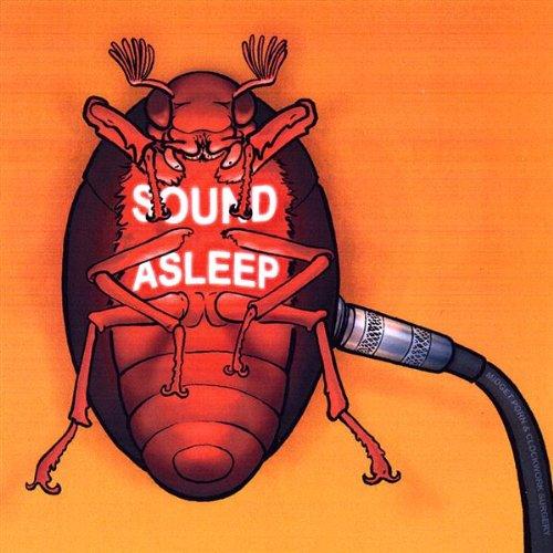 Soundasleep air mattress