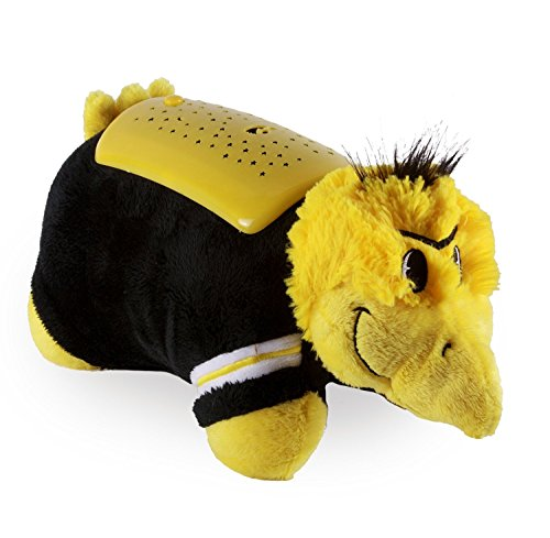 NCAA Iowa Hawkeyes Dream Lite Pillow (Iowa Hawkeyes Pillow)