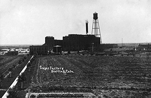 Sterling, Colorado - Sugar Factory Photograph (16x24 SIGNED Print Master Giclee Print w/Certificate of Authenticity - Wall Decor Travel Poster)