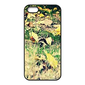 Iphone 5/5S Case autumn 22 Black tcj520861 tomchasejerry