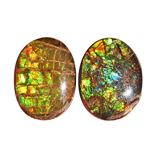 (ABC Jewelry Mart 100% Natural Ammolite Fire Pair Cabochon, Earring Pair Stone, Green Flashy Ammonites, Size 16x12x5.5 MM AG-12125)