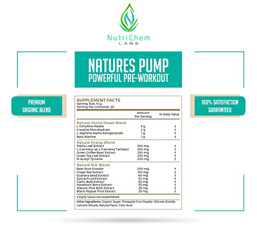 NutriChem Labs NATURES PUMP - Powerful Natural Pre-Workout - Increase Energy and Nitric Oxide Levels - Watermelon - Naturally Sweeteened - 20 Servings