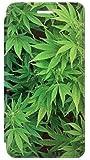 JPW1656 マリファナ Marijuana Plant IPHONE 5 5S SE フリップケース