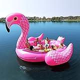 Party Bird Island - Flamingo