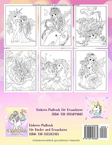 Das Fantastische Ausmalbuch Feen Elfen Meerjungfrauen