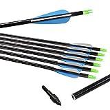 "Best iSport Arrows - 32"" Archery Fiberglass Arrows Glass Fiber Shaft 2 Review"