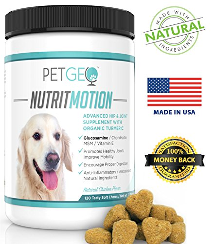 GLUCOSAMINE for Dogs, Chondroitin, MSM, Organic Turmeric, Natural Hip and Joint Supplement, Vitamin E, Arthritis Pain Relief, Anti-inflammatory, Antioxidant, Improves Hip Dysplasia, 120 Chews Treats by PETGEO