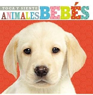 Toca y siente animales bebés (Spanish Edition)