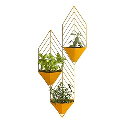 Flower Rack Removable Multi-Layer Plant Stand Display Racks, Nordic Iron Art Pastoral Living Room Shop Wall Hanging Flower Stand (Color : Yellow): Home & Kitchen