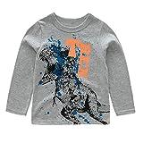 HowJoJo Big Boys Dinosaur T Shirts Cotton Long Sleeve Shirt Graphic Tees Gray 8T