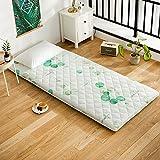 CNZXCO Student Dormitory Mattress pad Japanese futon Tatami mat Sleeping Folding Tatami pad, Mattress Topper Protector Bed mat Sleeping pad Hypoallergenic-E 150x190cm(59x75inch)