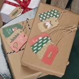 Ginger Ray Christmas Gift / luggage Tags with Puddings, Tress & Robins x 9 With Twine - Christmas Patterns