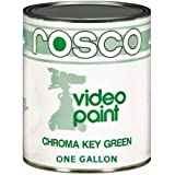 Rosco Chroma Key Matte Green Paint - Gallon
