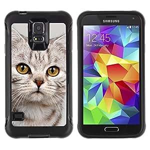 """Pulsar iFace Series Tpu silicona Carcasa Funda Case para Samsung Galaxy S5 V , Gatito triste lindo del gato del gatito peludo Beige"""""""