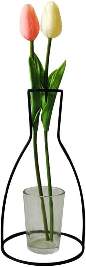 HEALLILY Jarrón de Metal con Marco de Hierro para Plantas de Escritorio, terrario, jarrón de Cristal para Flores secas de Cactus, Hierro, Style 3, 12 x 23 x 1cm