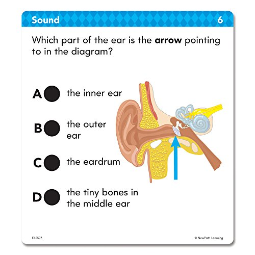 Educational Insights Hot Dots Science Standards-Based Review Cards - Grade 3 Photo #4
