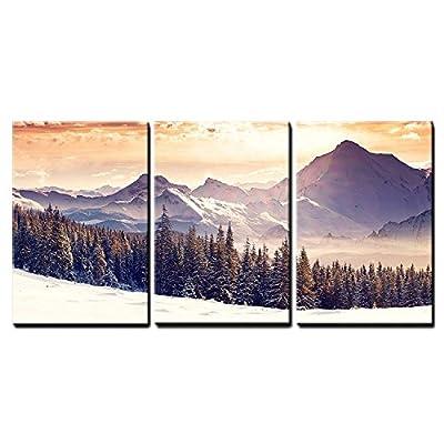 Beautiful Winter Landscape - Canvas Art Wall Art - 16