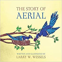 Book The Story of Aerial