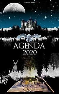 ERIK - Agenda 2020 semana vista Harry Potter, A5: Amazon.es ...