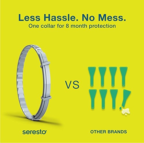 Large Product Image of Bayer Seresto Flea Collar for Small Dogs up to 18 lbs., 8-month Flea and Tick Protection for Dogs