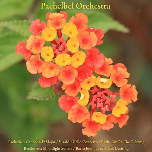 Pachelbel: Canon / Vivaldi: Cello Concerto / Bach: Air On The G String / Beethoven: Moonlight Sonata / Bach: Jesu, Joy of Man's Desiring / Mozart: Sonata Facile / Wedding March / Schubert: Ave Maria / Wagner: Bridal Chorus