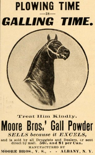 1907-ad-moore-bros-gall-powder-galling-horse-plowing-original-print-ad