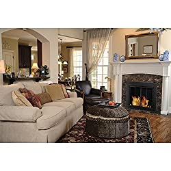Pleasant Hearth AT-1000 Ascot Fireplace Glass Door, Black from GHP Group -- Drop Ship Only
