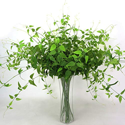 keebgyy 4 Fork Simulation Clematis Leaves, Fake Flower Wall Hanging Rattan Honeysuckle Leaves Artificial Plants Wedding Decoration, 1 Stick, Length About 96CM
