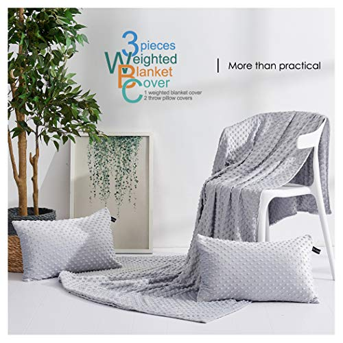 Cheap cieltown Removable Duvet Cover for Weighted Blanket 60x80 with Zipper and 8 Ties Super Soft Velvet Machine Washable 2 Throw Pillow Covers Free (Light Gray Cover Minky Dot 3PC 60