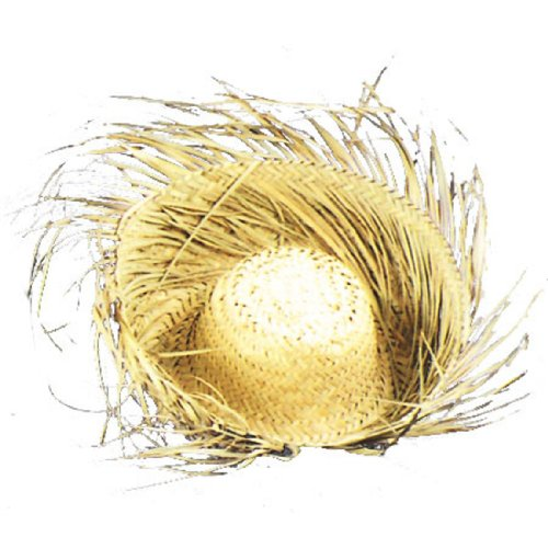 Bird's Nest Woven 4 in. Brim Straw Hat Halloween Costume Accessory (Geek Costume Accessories)