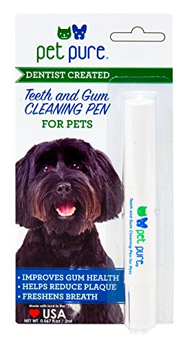 Dr. Brite DBP-101 Teeth and Gum Cleaning Pen, Sweet Parsley, 0.067 Fluid Ounce 51lnXLP75AL