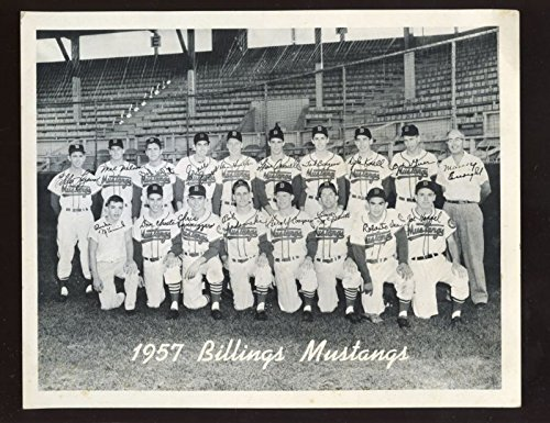 1957 Billings Mustangs Minor League Baseball Team Photo EX+
