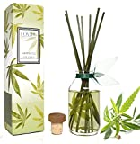 LOVSPA Cannabis Essential Oil Aromatherapy Reed Diffuser Gift Set | HAPPINESS by Fragrances | Earthy-Woody notes of the Cannabis Plant Blend with Apricot, Balsam, Minty Patchouli & Amber