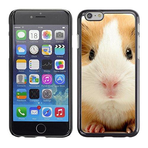 """Premio Sottile Slim Cassa Custodia Case Cover Shell // V00003201 mignon cochon Guinée // Apple iPhone 6 6S 6G PLUS 5.5"""""""