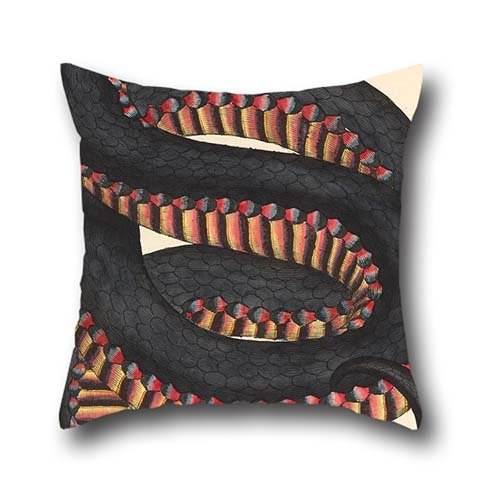 Cushion Cases 20 X 20 Inch / 50 By 50 Cm(each Side) Nice Choice For Bf,bench,sofa,kids Girls,kids Room,deck Chair Oil Painting James Sowerby - Crimson-sided Snake, Coluber Porphyriacus (Boots Kilim)
