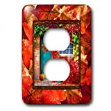 3dRose Beverly Turner Autumn Design - Aqua Door, Pumpkin, Watering Can, Window with Leaves, Autumn Colors - Light Switch Covers - 2 plug outlet cover (lsp_290396_6)