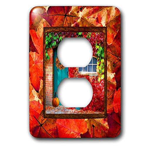 3dRose Beverly Turner Autumn Design - Aqua Door, Pumpkin, Watering Can, Window with Leaves, Autumn Colors - Light Switch Covers - 2 plug outlet cover (lsp_290396_6) by 3dRose