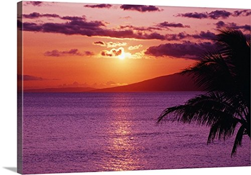 Tomas Del Amo Premium Thick-Wrap Canvas Wall Art Print entitled Hawaii, Maui, Tropical Sunset With Palm Tree by Canvas on Demand