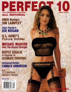 Download Perfect 10 Adult Magazine Spring 2003 pdf epub