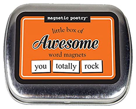 828f09e01c28b6 Amazon.com  Magnetic Poetry - Little Box of Awesome Kit - Words for  Refrigerator - Write Poems and Letters on The Fridge - Made in The USA   Toys   Games