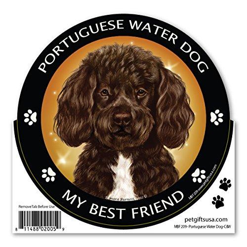Brown Portuguese Water Dog My Best Friend Magnet