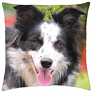 Collie - Throw Pillow Cover Case (18
