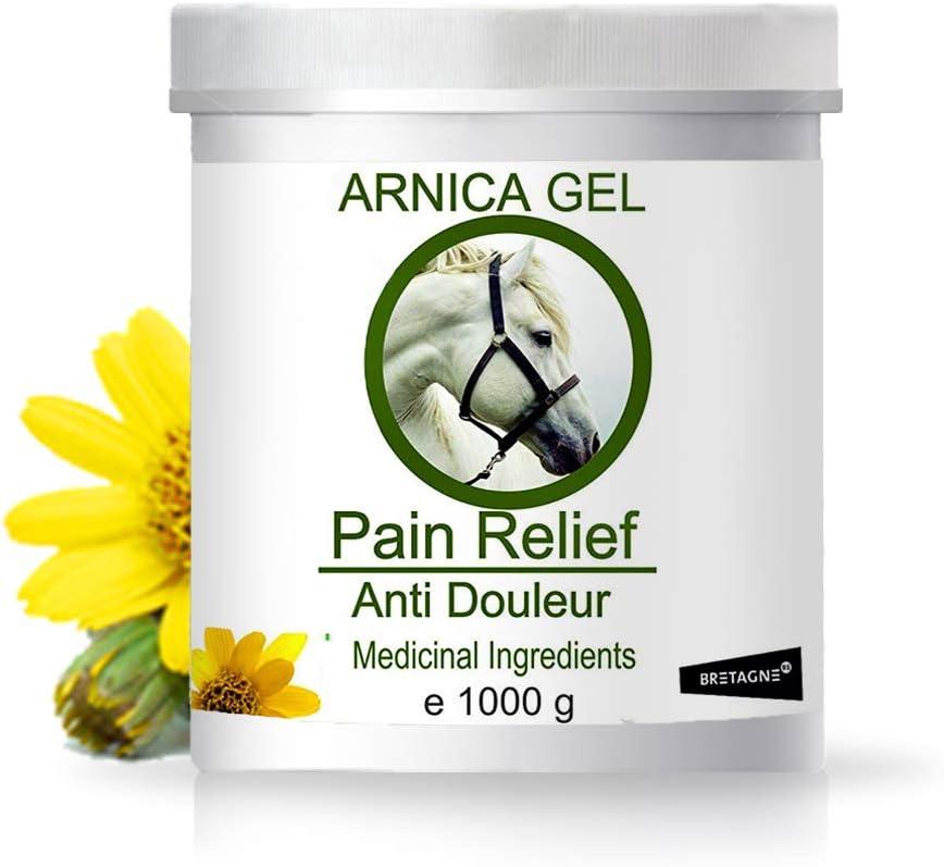 90% Gel de Árnica Montana y Aloe Vera Caballos 1000g Acción Rápida Remedio herbal 100% Natural