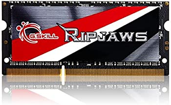 G.SKILL Ripjaws Series 8GB Memory