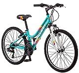 Schwinn High Timber Mountain Bike, Steel Frame, 24-Inch Wheels, Teal