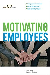 Motivating Employees (Briefcase Books Series)