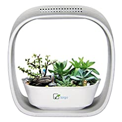 Indoor Garden Kits