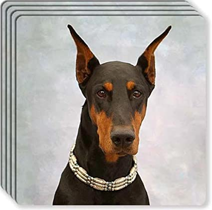 Doberman Dog Set of 4 Coasters
